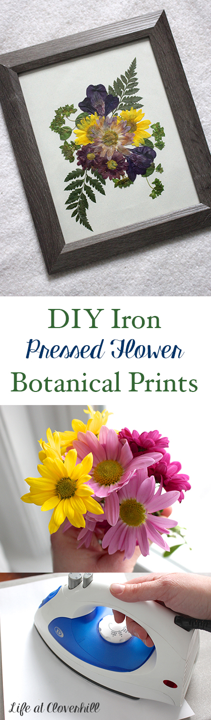 diy-iron-pressed-flower-botantical-prints