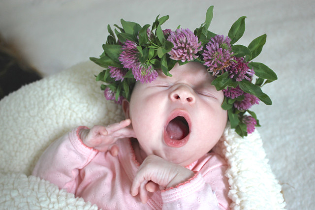 lucy-newborn-flower-crown