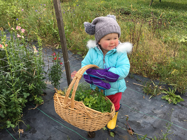 lucy-collecting-herbs