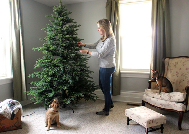 assembling-tree-canadian-tire